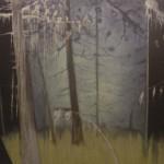 Paerzum, 2004, oil on canvas, 200 x 300 cm, courtesy of Stedelijk Museum Het Domein, Sittard, NL