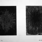 Reinkaos, 2013, etching on paper no. 3/3, 19 X 27 cm - sell price € 400